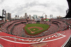Saint Louis Cardinals photo