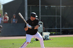 Paul Goldschmidt Diamondbacks photo